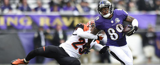 Achilles injury benches Ravens' Steve Smith Sr. for the season