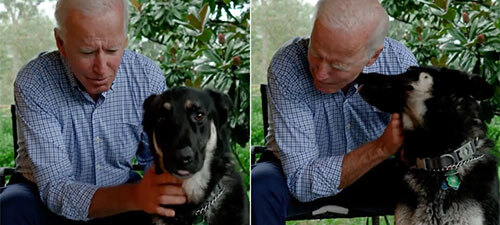 Biden Gets Foot Stress Fracture Playing with Dog, How Common is This?